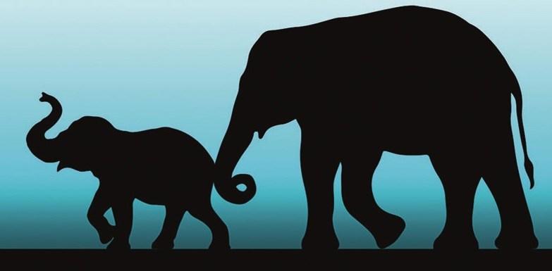 immagine stilizzata di due elefanti